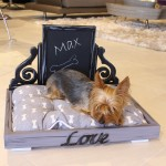 """His"" Bed by Fiat Framing Boca Raton"